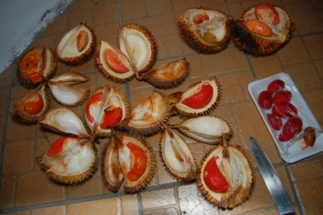 Red coloured durians!!!