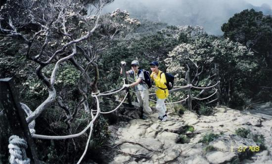 Summit Trail of Kinabalu